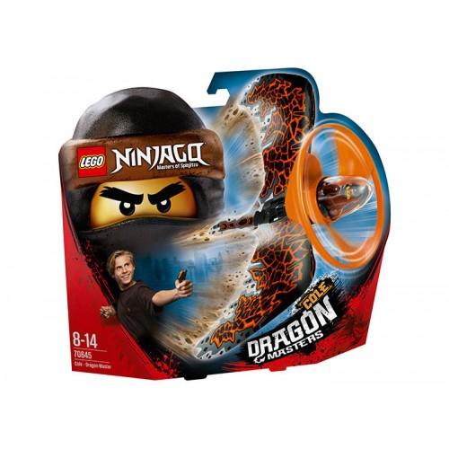 Lego Ninjago - Cole Dragonjitzu
