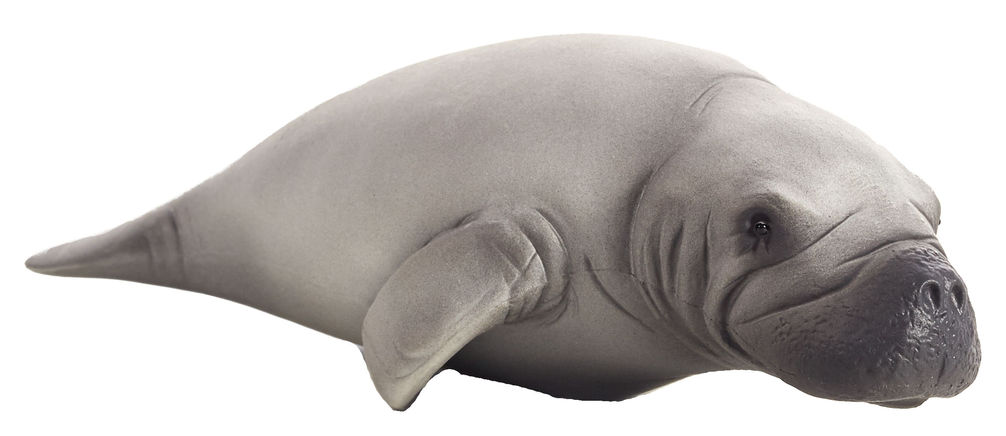 Figurina lamantin mojo
