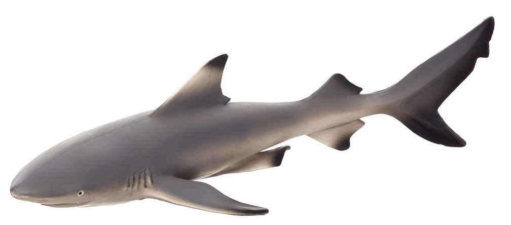Figurina rechin negru de recif mojo