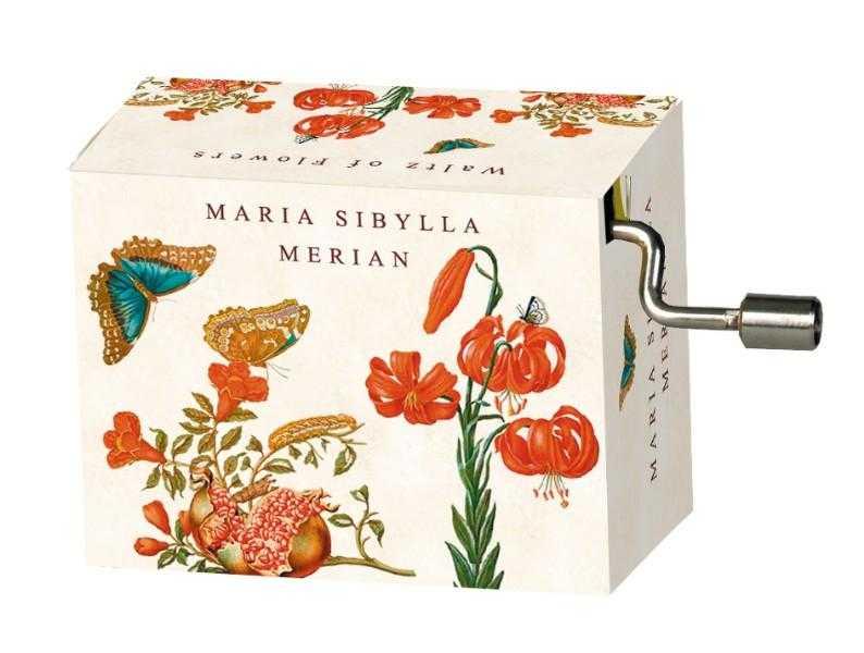 Flasneta maria sibylla merian (fluturi) tchaikovsky walts of flow imagine